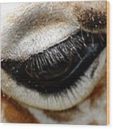 Lashes On The Eye Wood Print