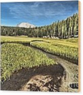 Lassen Meadows Wood Print