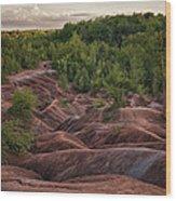 Last Look At The Badlands Wood Print