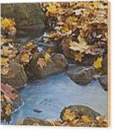 Last Signs Of Autumn 0438 Wood Print
