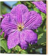 Last Summer Bloom Wood Print