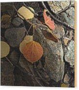 Last Vestige Of Fall Wood Print