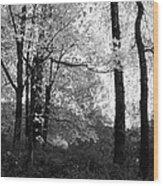 Lasting Leaves Wood Print