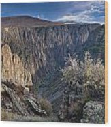 Late Afternoon At Black Canyon Of The Gunnison Wood Print