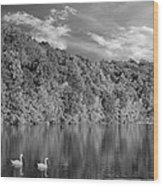 Late Afternoon At The Lake - Bw Wood Print