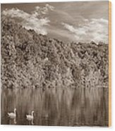 Late Afternoon At The Lake - S Wood Print