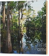 Late Afternoon At The Swamp Wood Print