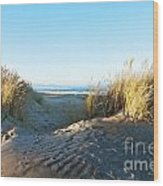 Late Afternoon Light Waikuku Beach Wood Print