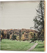 Late Fall In Waynesville Wood Print