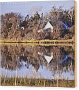 Late Fall Reflection Wood Print by Vicki Jauron