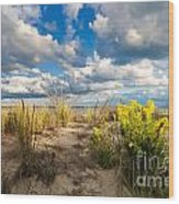 Late Summer Dunes Ocean City Wood Print