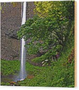 Latourell Falls Oregon - Posterized Wood Print