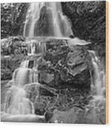 Laurel Falls In The Smoky Mountains Wood Print