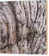 Lava Design Wood Print
