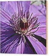 Lavender Clematis Wood Print