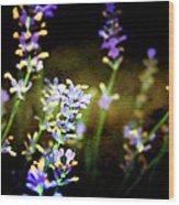 Lavender Dream Wood Print