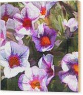 Lavender Million Bells Flowers Wood Print