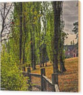 Le Chateau A Fall Day In The Nw Wood Print by Sarai Rachel