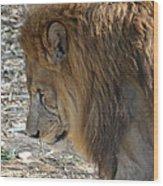 Le Lion Wood Print