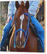 Lead Horse Wood Print