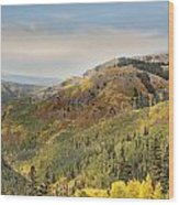 Lead King Basin Road 2 Wood Print