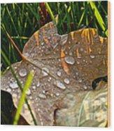 Leaf Beads Wood Print
