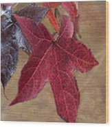 Leaf In Red Wood Print