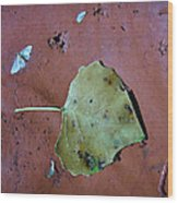 Leaf Libretto Wood Print
