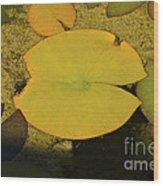 Leaf On A Pond Wood Print
