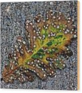 Leaf On The Sidewalk Wood Print by Robert Ullmann