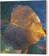 Leaf Portrait 5 Wood Print