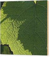 Leaf Shadow Wood Print