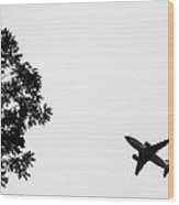 Leafing On A Jet Plane Wood Print