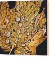 Leafwash Wood Print