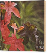 Leafy Wood Print