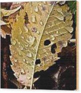 Leafy Tears Wood Print