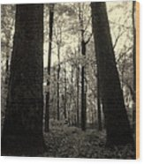 Lean Two Wood Print