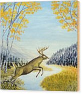 Leap Of Faith Wood Print