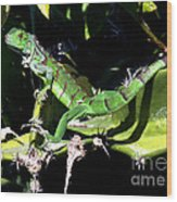 Leapin Lizards Wood Print by Karen Wiles