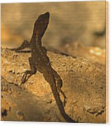 Leapin' Lizards Wood Print