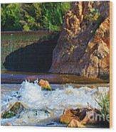 Leasburg Dam New Mexico Wood Print