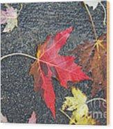 Leave The Leaves Wood Print