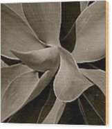 Leaves II - Mono Wood Print