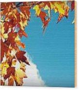 Leaves In The Sky Wood Print