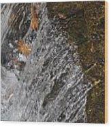 Leaves In The Water Wood Print