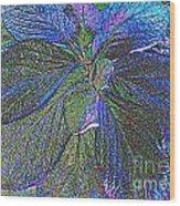 Leaves Of Blue Wood Print