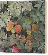 Leaves Of Three   Let It Be Wood Print