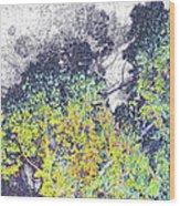 Leaves On A Tree Wood Print