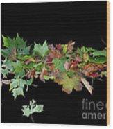 Leaves On Sidewalk Wood Print