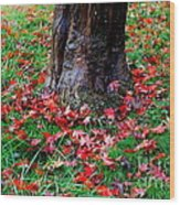 Leaves On The Ground Wood Print
